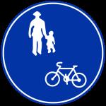 Bicycle Bike Accident Japan